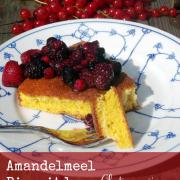 Amandelmeel Biscuitdeeg - Glutenvrij