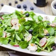 Salade van Veldsla, Radijs en Blauwe Bes