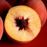 Wat kun je doen met Nectarines?