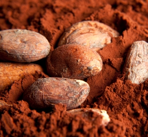 Cacao Magnesiumrijk