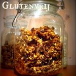Dag 3 Recept – Zelfgemaakte Cruesli Glutenvrij