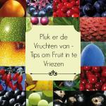 Pluk er de Vruchten van – Tips om Fruit in te Vriezen