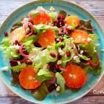Salade van Sinaasappel, Kidneybonen en Geitenkaas
