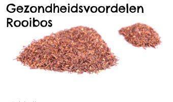rooibos_rooibos_1