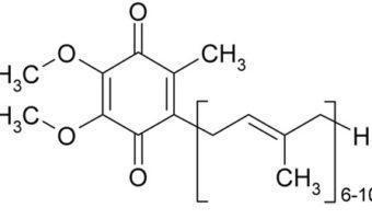 Coenzym Q10 of Ubiquinol