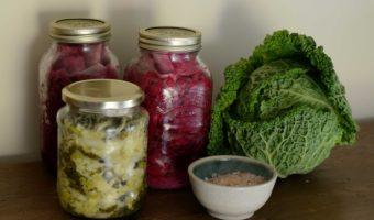 Gezondheidsvoordelen van Gefermenteerd Voedsel