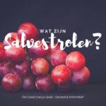 Salvestrolen – Wat zijn dat en waarom zijn ze Belangrijk?