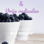 Antioxidanten en Vrije Radicalen uitgelegd