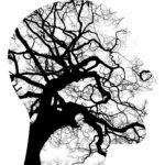 Probiotica & De Hersenen