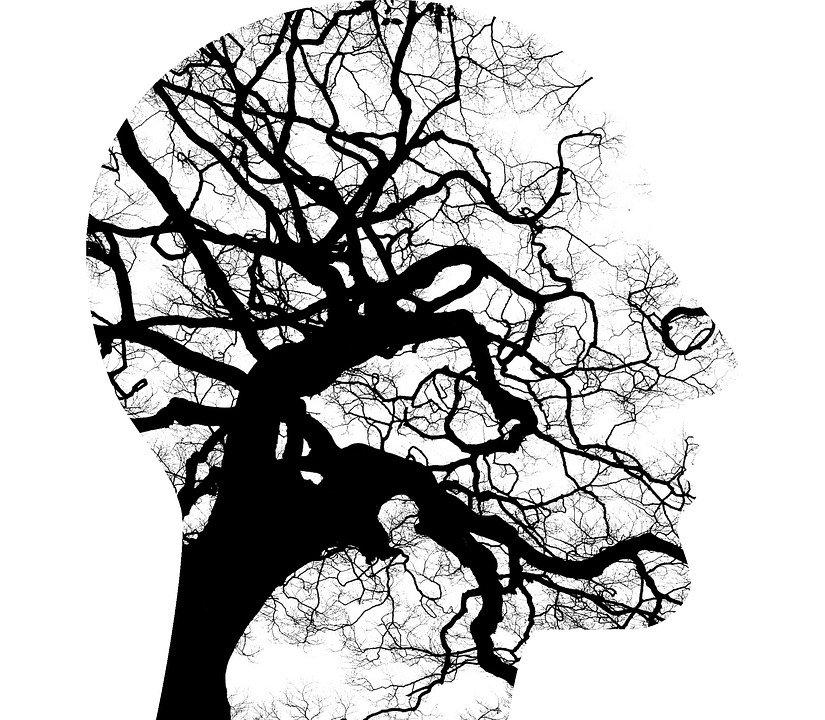 probiotica en hersenen