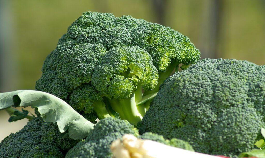 4 belangrijke voedingsmiddelen voor mannen