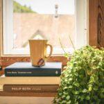 11 Tips voor Schone Lucht in Huis op Natuurlijke Basis